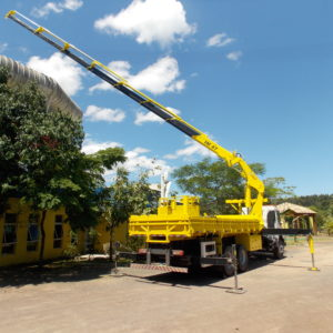 Articulated crane